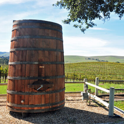 oak tank for winemaking
