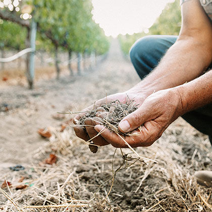 winemaker jon priest holding a handful of soil from estate vineyard